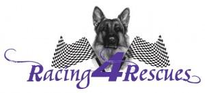 Racing 4 Rescues